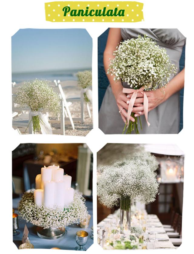 Decora tu boda con paniculata ;)