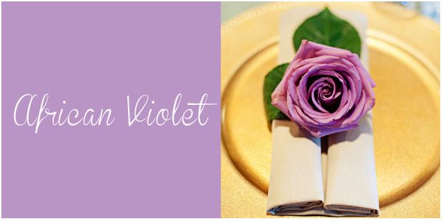 colores pantone primavera 2013 African Violet  bodas
