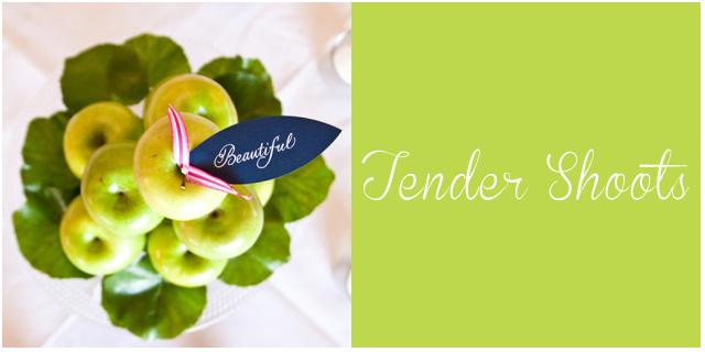 colores pantone primavera 2013 Tender shoots  bodas