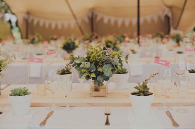 8 decoración con suculentas flores boda