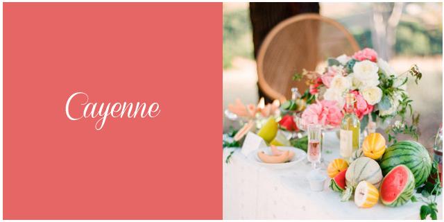 Colores boda primavera verano 2014 cayenne