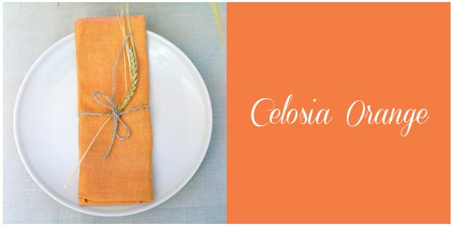 Colores boda primavera verano 2014 celosia orange