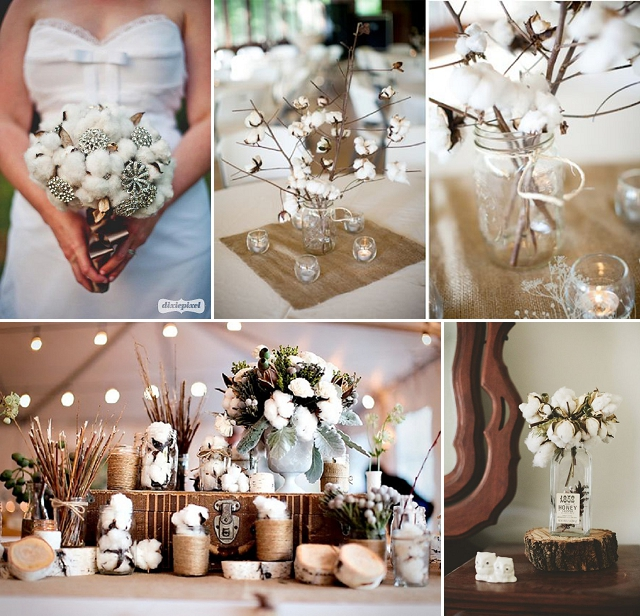 flores para tu boda flor de aglodon invierno rustico (1)