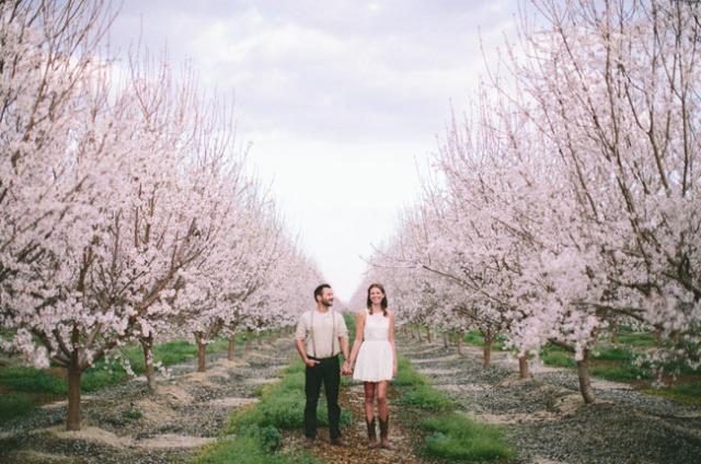 sesión preboda campo de almendros primavera (1)
